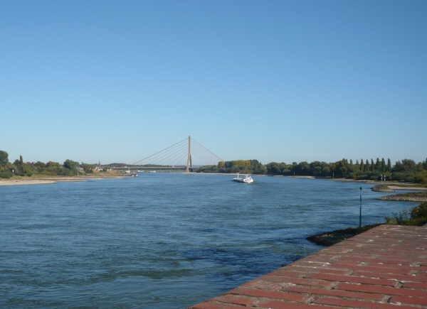 Rhein bei Neuss