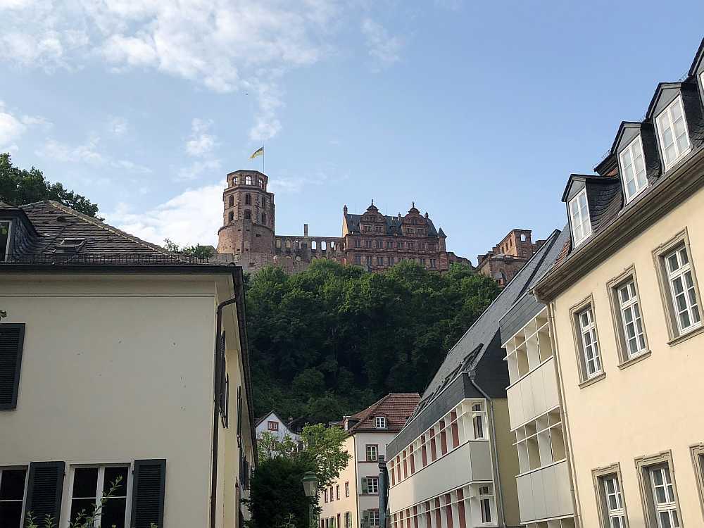 Das Schloss von Heidelberg - eigene Aufnahme (rof)